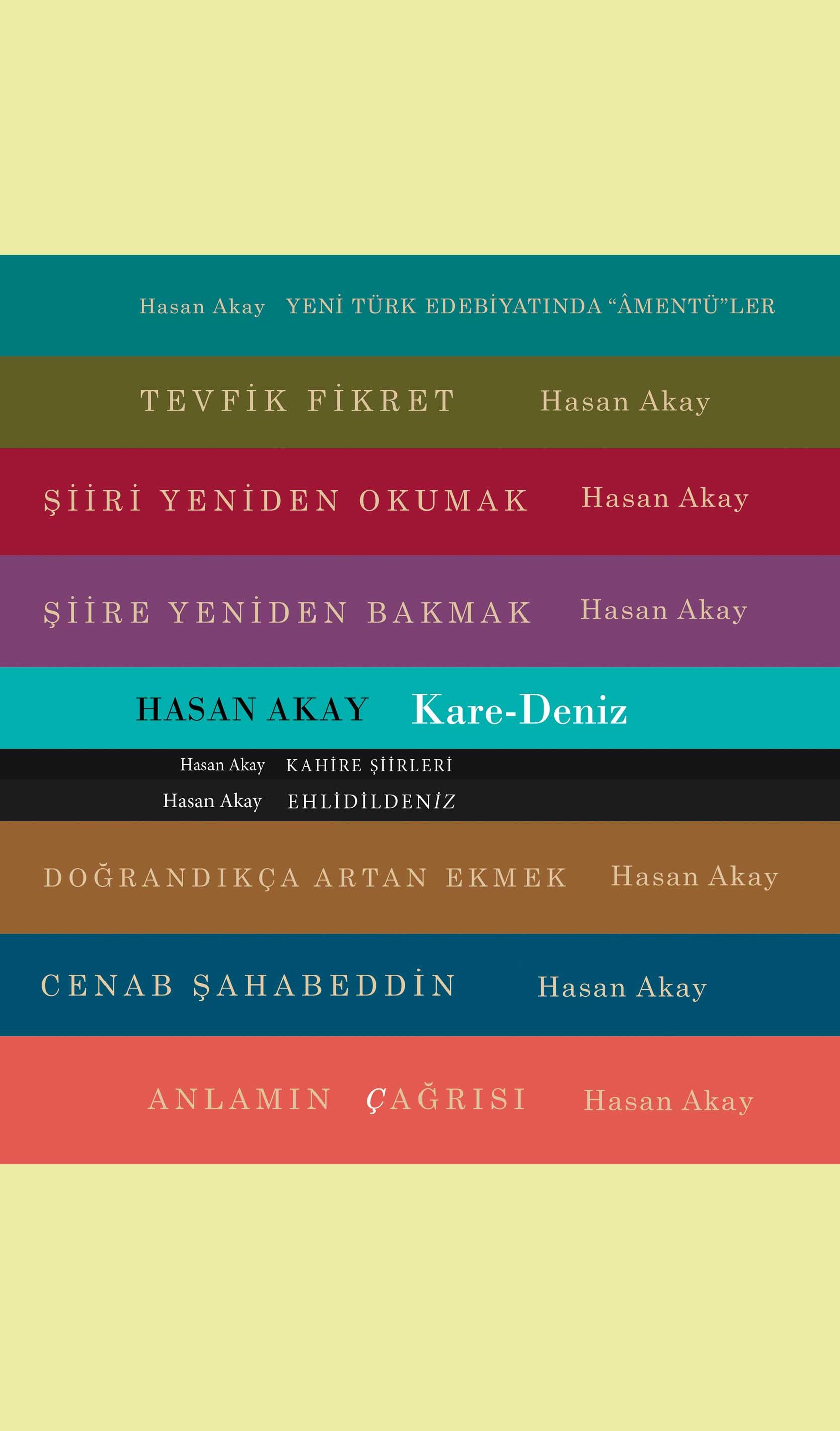 Hasan Akay Kitapları